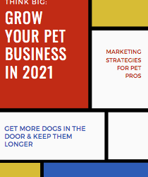 Marketing Strategy for Pet Care Professionals