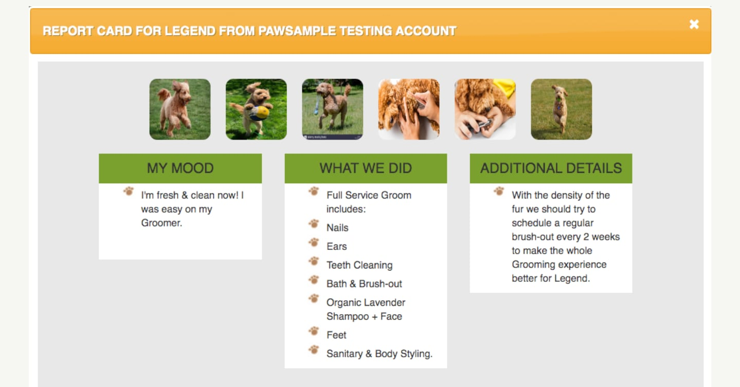 screenshot of pawloyalty software